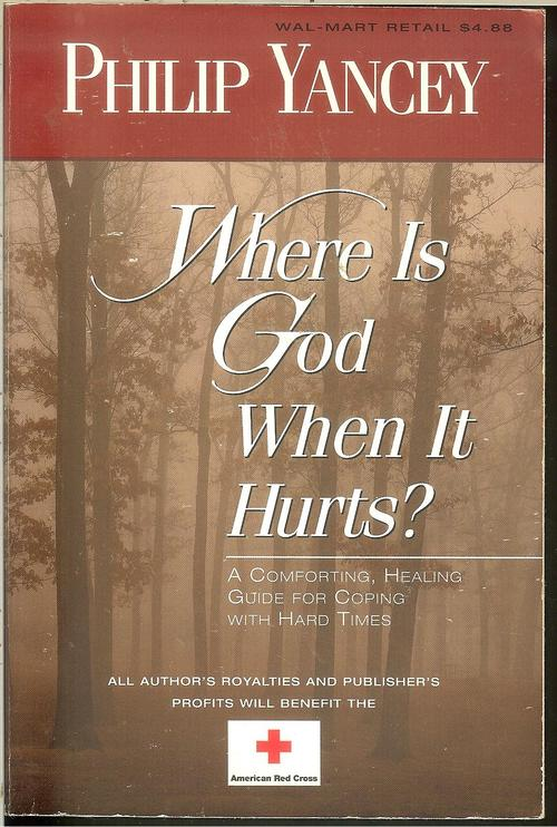 the philosophy about pain in where is god when it hurts by philip yancey Philip yancey on pain as a design feature philip yancey on jesus at the center for me jesus has all-knowing god allow people to experience pain and.