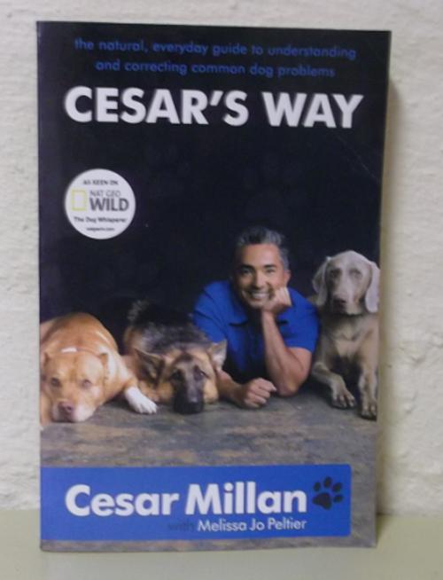 Pets amp animal care cesar s way cesar millan paperback was sold
